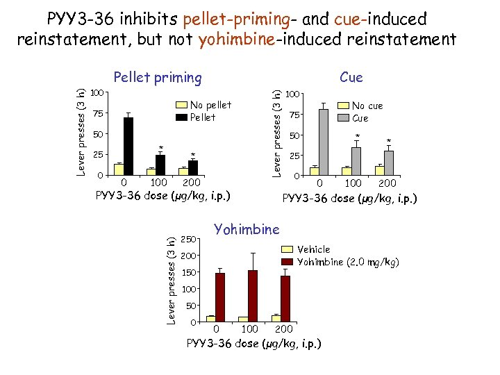 PYY 3 -36 inhibits pellet-priming- and cue-induced reinstatement, but not yohimbine-induced reinstatement Cue Lever