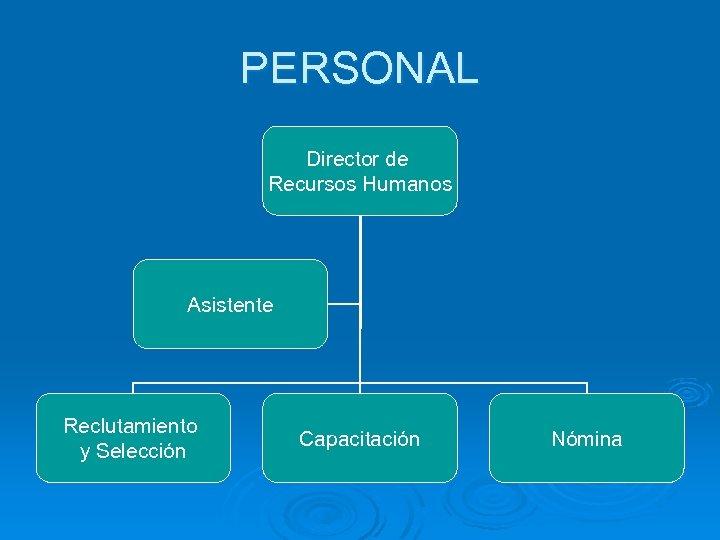 PERSONAL Director de Recursos Humanos Asistente Reclutamiento y Selección Capacitación Nómina