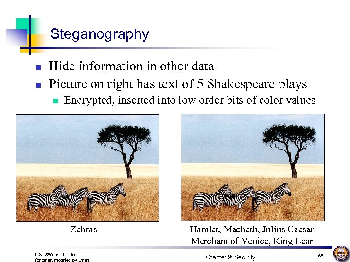Steganography n n Hide information in other data Picture on right has text of