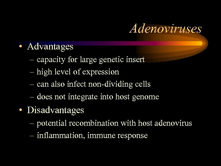 Adenoviruses • Advantages – capacity for large genetic insert – high level of expression
