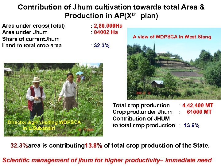 Contribution of Jhum cultivation towards total Area & Production in AP(Xth plan) Area under