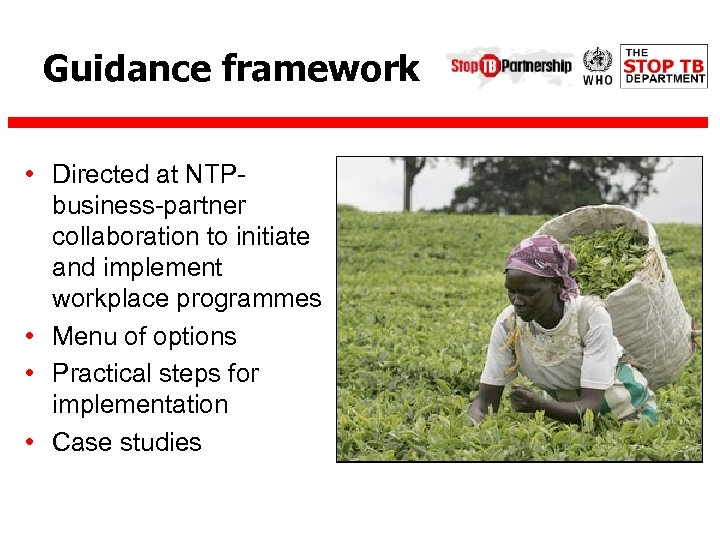 Guidance framework • Directed at NTPbusiness-partner collaboration to initiate and implement workplace programmes •