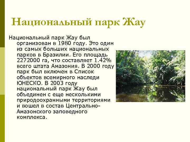 Национальный парк Жау был организован в 1980 году. Это один из самых больших национальных