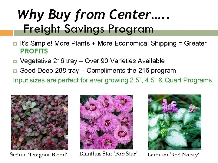 Why Buy from Center…. . Freight Savings Program It's Simple! More Plants + More