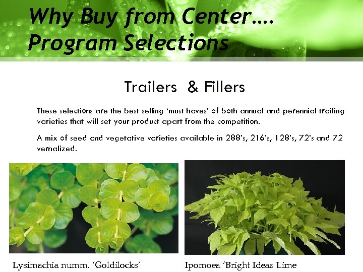 Why Buy from Center…. Program Selections Trailers & Fillers These selections are the best