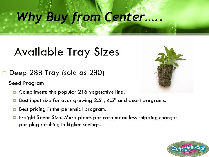 Why Buy from Center…. . Available Tray Sizes Deep 288 Tray (sold as 280)