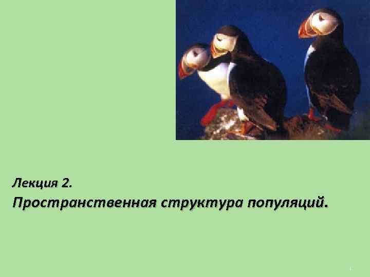 Лекция 2. Пространственная структура популяций. 1