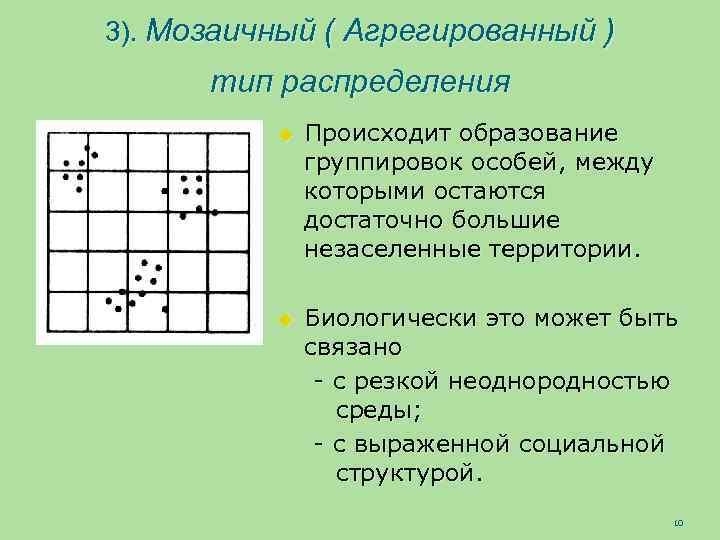 3). Мозаичный ( Агрегированный ) тип распределения u Происходит образование группировок особей, между которыми