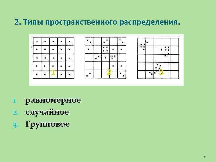 2. Типы пространственного распределения. 1 2 3 1. равномерное 2. случайное 3. Групповое 5