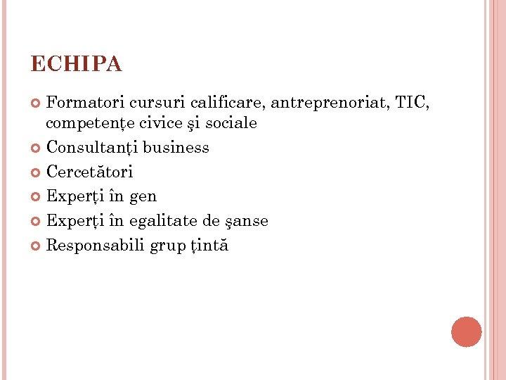 ECHIPA Formatori cursuri calificare, antreprenoriat, TIC, competenţe civice şi sociale Consultanţi business Cercetători Experţi
