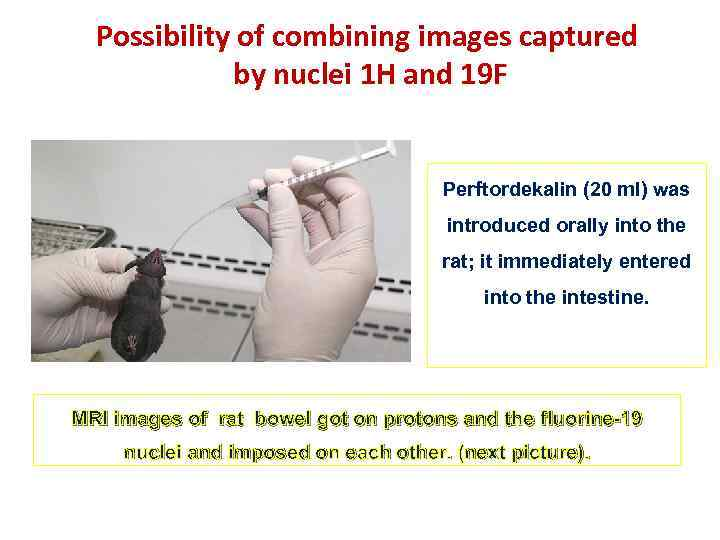 Possibility of combining images captured by nuclei 1 H and 19 F Perftordekalin (20