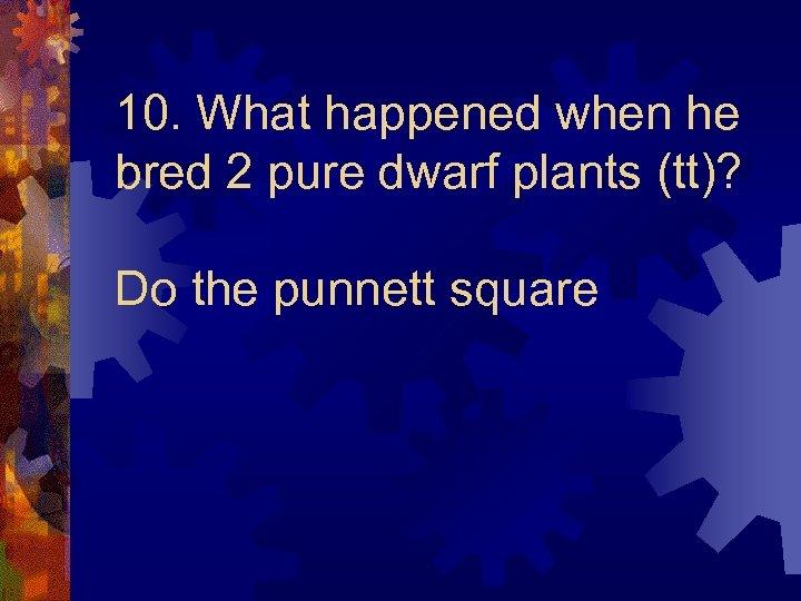 10. What happened when he bred 2 pure dwarf plants (tt)? Do the punnett