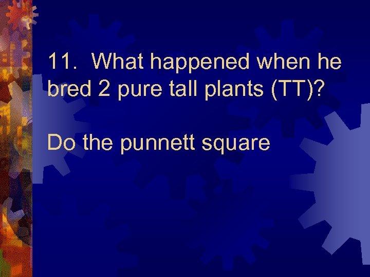 11. What happened when he bred 2 pure tall plants (TT)? Do the punnett