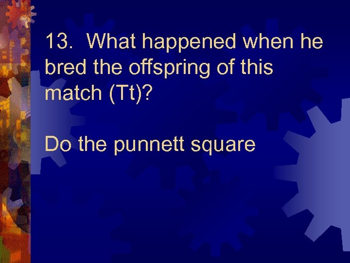 13. What happened when he bred the offspring of this match (Tt)? Do the