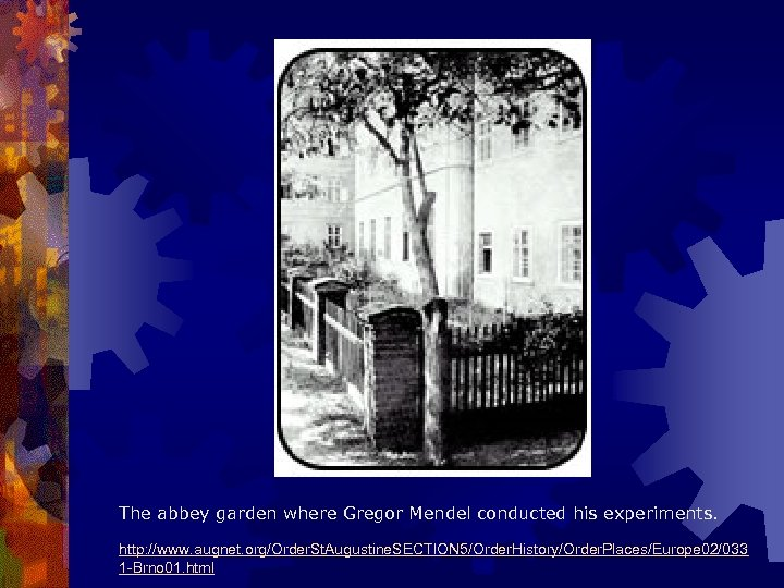 The abbey garden where Gregor Mendel conducted his experiments. http: //www. augnet. org/Order. St.