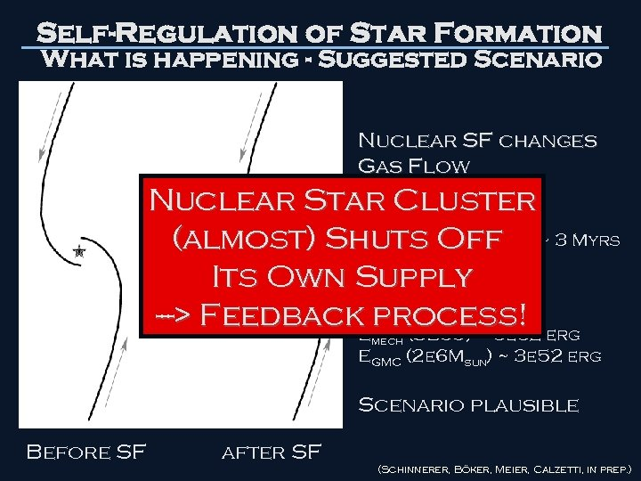 Self-Regulation of Star Formation What is happening - Suggested Scenario Nuclear SF changes Gas
