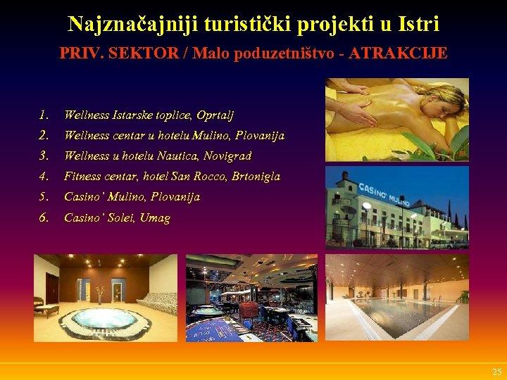 Najznačajniji turistički projekti u Istri PRIV. SEKTOR / Malo poduzetništvo - ATRAKCIJE 1. Wellness
