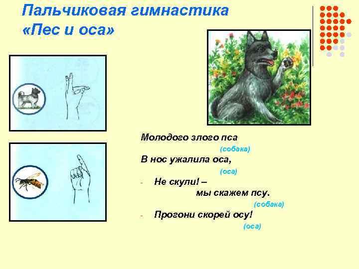 Пальчиковая гимнастика «Пес и оса» Молодого злого пса (собака) В нос ужалила оса, (оса)