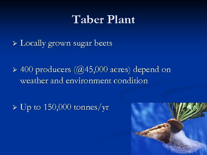 Taber Plant Ø Locally grown sugar beets Ø 400 producers (@45, 000 acres) depend