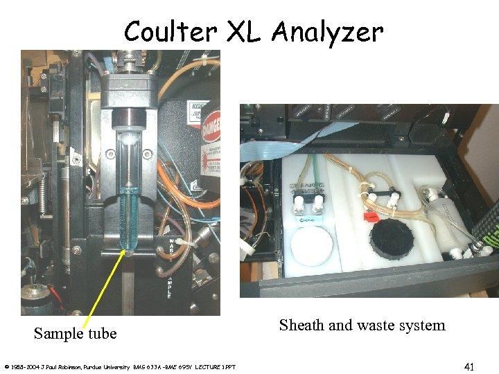 Coulter XL Analyzer Sample tube © 1988 -2004 J. Paul Robinson, Purdue University BMS