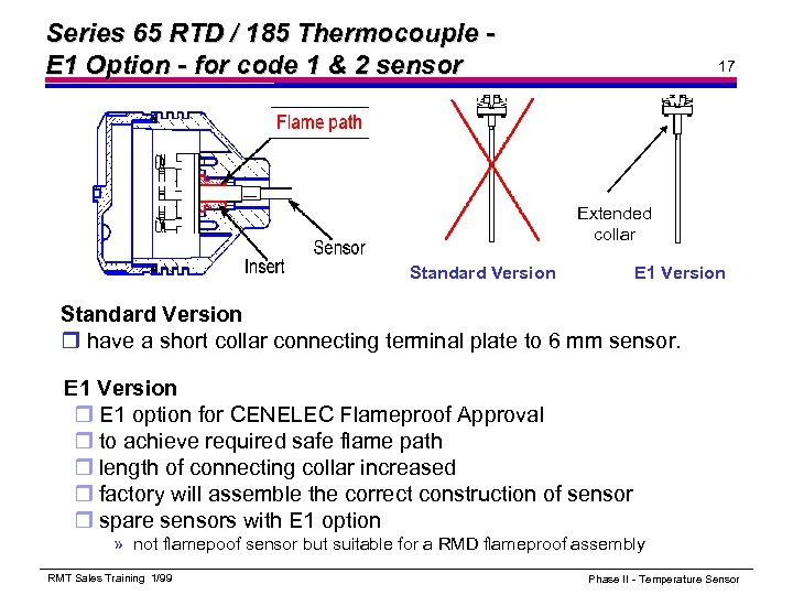 Series 65 RTD / 185 Thermocouple E 1 Option - for code 1 &