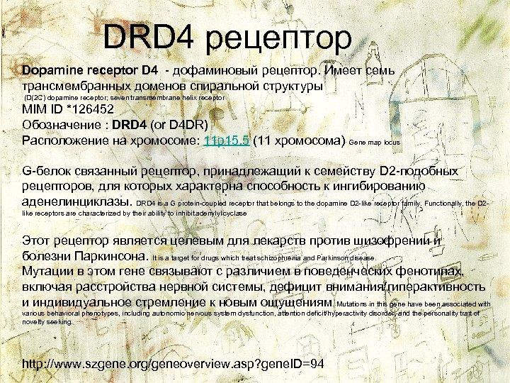 DRD 4 рецептор Dopamine receptor D 4 - дофаминовый рецептор. Имеет семь трансмембранных доменов