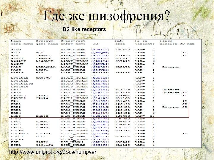 Где же шизофрения? D 2 -like receptors http: //www. uniprot. org/docs/humpvar