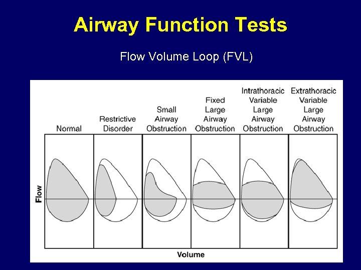 Airway Function Tests Flow Volume Loop (FVL)
