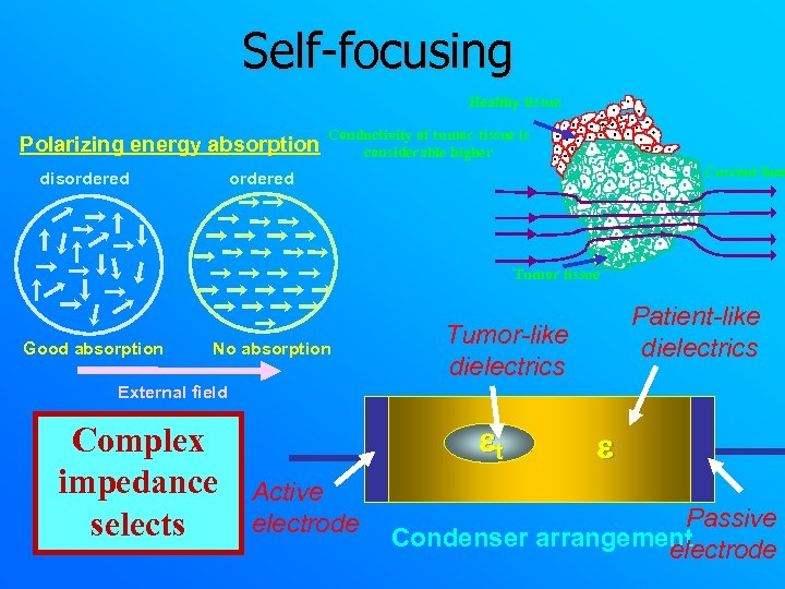 Self-focusing Healthy tissue Polarizing energy absorption disordered Conductivity of tumor-tissue is considerable higher Current