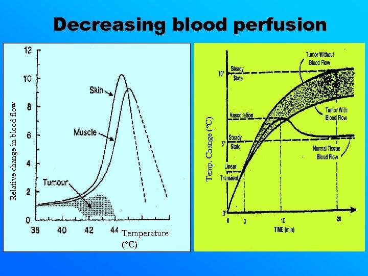 Temp. Change (°C) Relative change in blood flow Decreasing blood perfusion Temperature (°C)