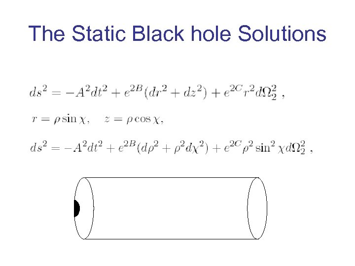 The Static Black hole Solutions