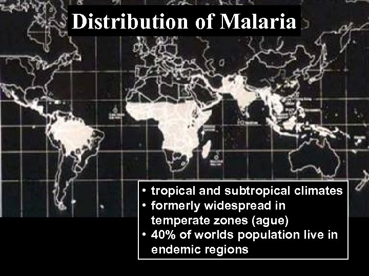 Distribution of Malaria • tropical and subtropical climates • formerly widespread in temperate zones