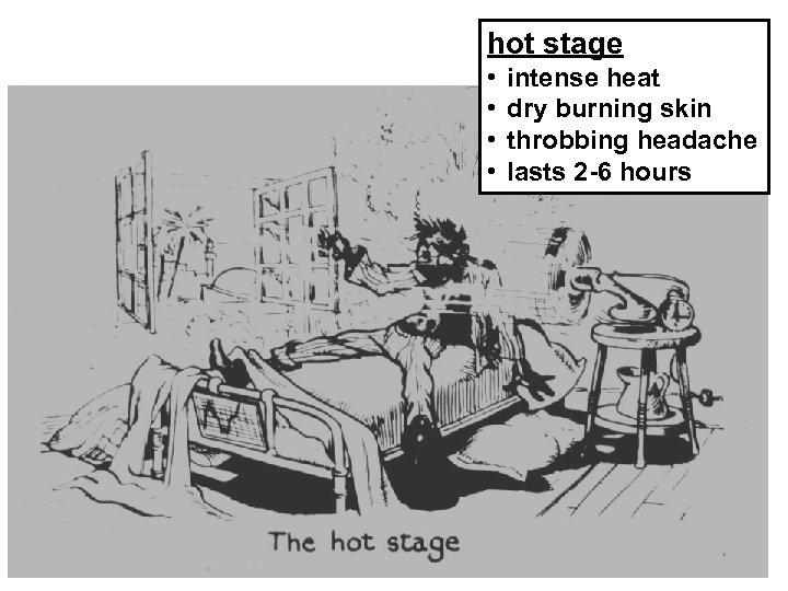 hot stage • • intense heat dry burning skin throbbing headache lasts 2 -6