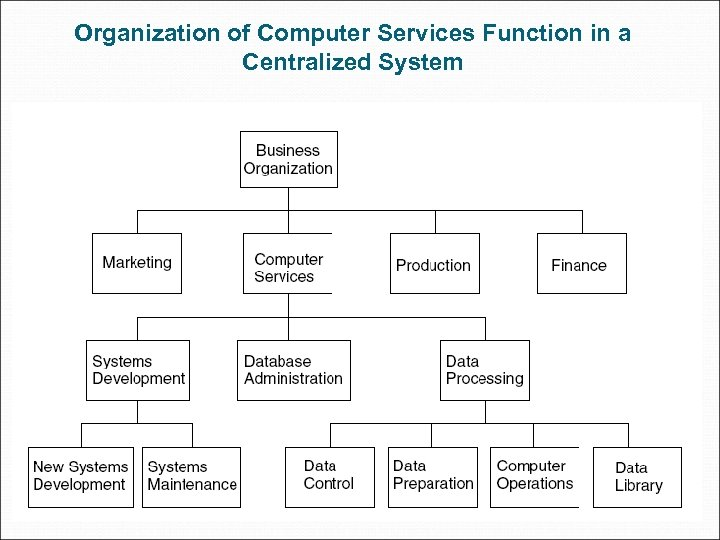 Organization of Computer Services Function in a Centralized System