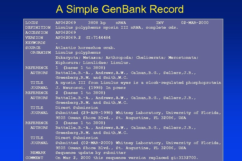 A Simple Gen. Bank Record LOCUS DEFINITION ACCESSION VERSION KEYWORDS SOURCE ORGANISM REFERENCE AUTHORS
