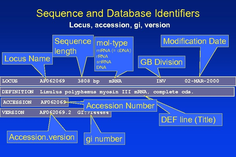 Sequence and Database Identifiers Locus, accession, gi, version Locus Name Sequence mol-type m. RNA