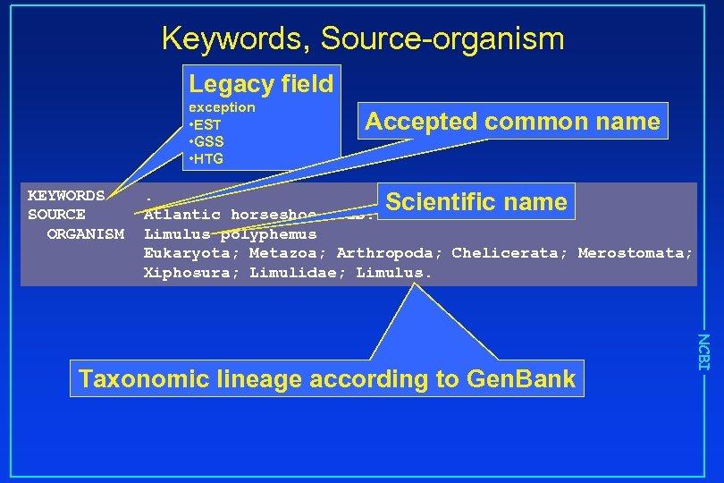 Keywords, Source-organism Legacy field exception • EST • GSS • HTG KEYWORDS SOURCE ORGANISM