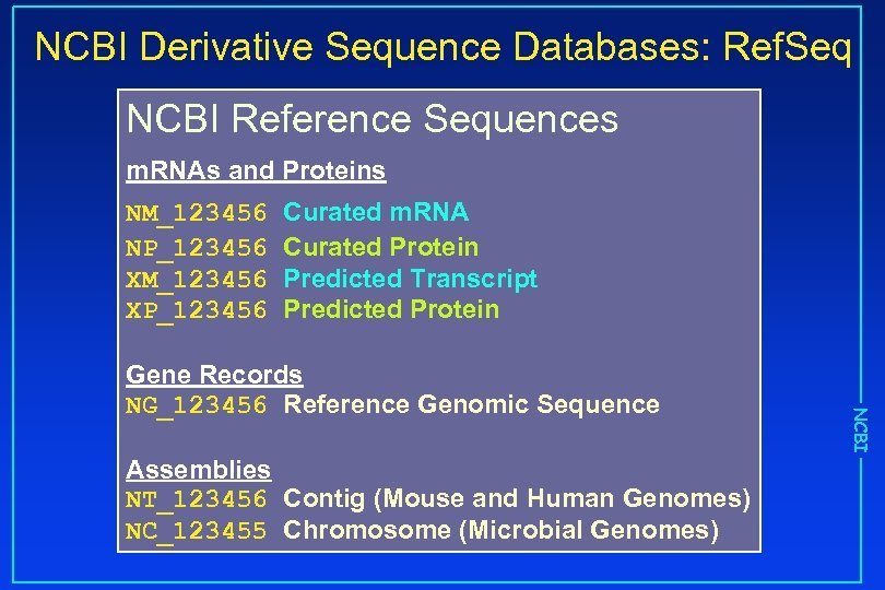 NCBI Derivative Sequence Databases: Ref. Seq NCBI Reference Sequences m. RNAs and Proteins NM_123456