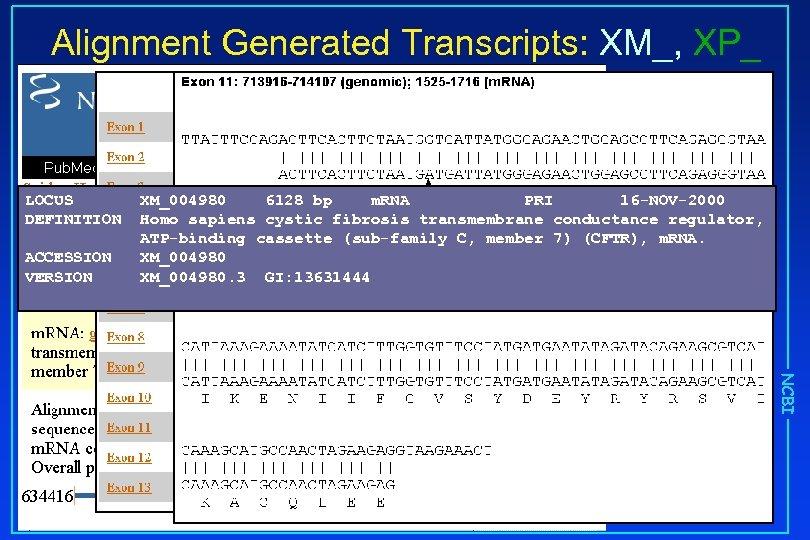 Alignment Generated Transcripts: XM_, XP_ LOCUS DEFINITION ACCESSION VERSION XM_004980 6128 bp m. RNA