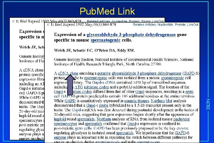 Pub. Med Link NCBI