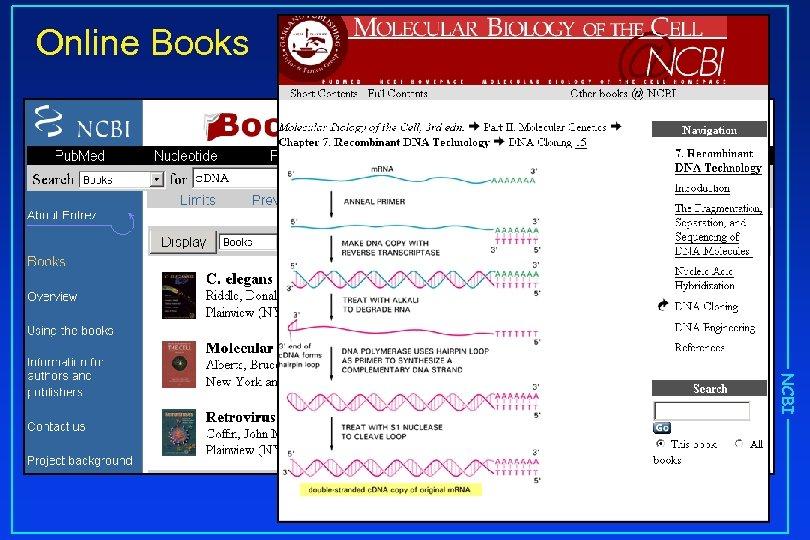 Online Books NCBI