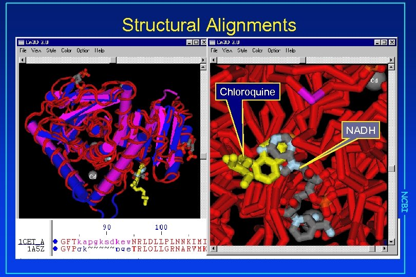 Structural Alignments Chloroquine NADH NCBI