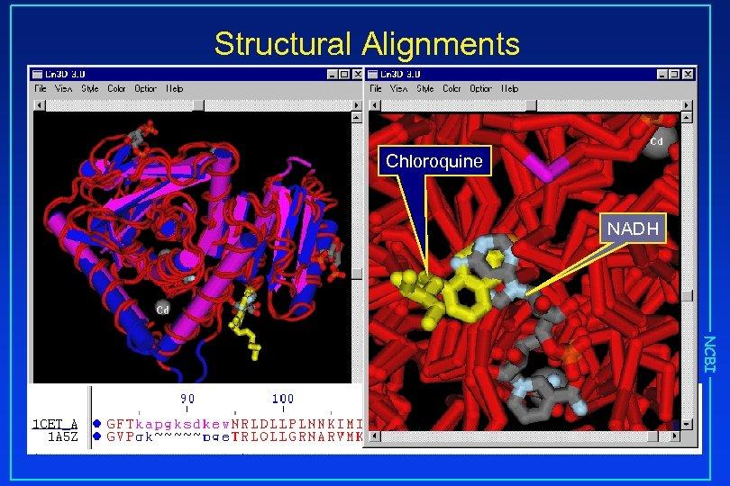 Structural Alignments Chloroquine NADH NCBI