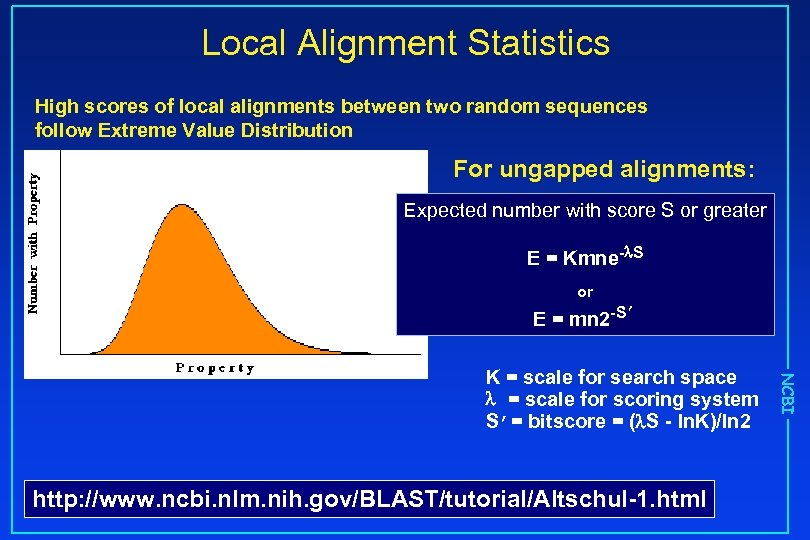 Local Alignment Statistics High scores of local alignments between two random sequences follow Extreme