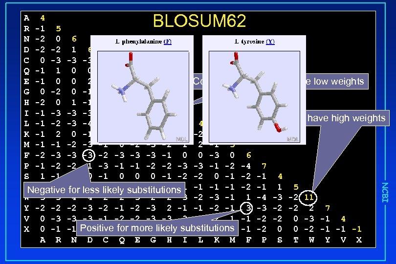 BLOSUM 62 NCBI A 4 R -1 5 N -2 0 6 D -2