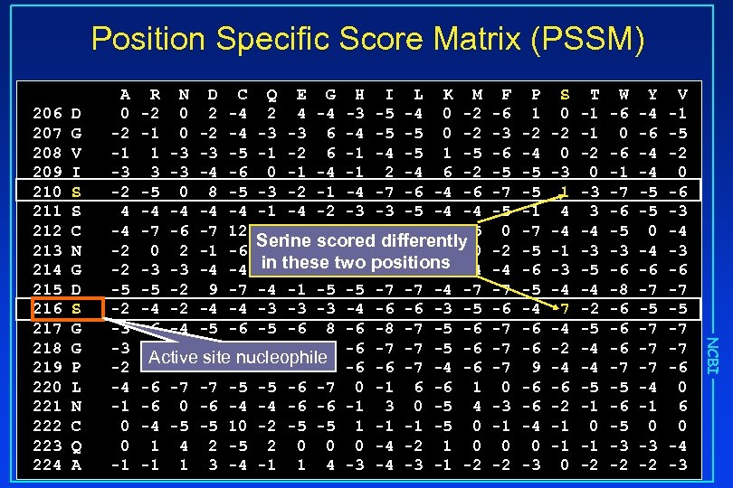 Position Specific Score Matrix (PSSM) D G V I S S C N G