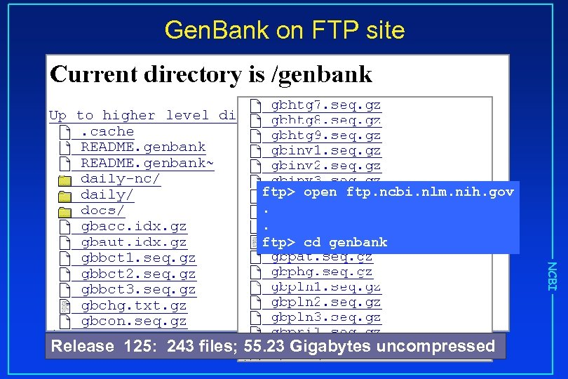 Gen. Bank on FTP site ftp> open ftp. ncbi. nlm. nih. gov. . ftp>