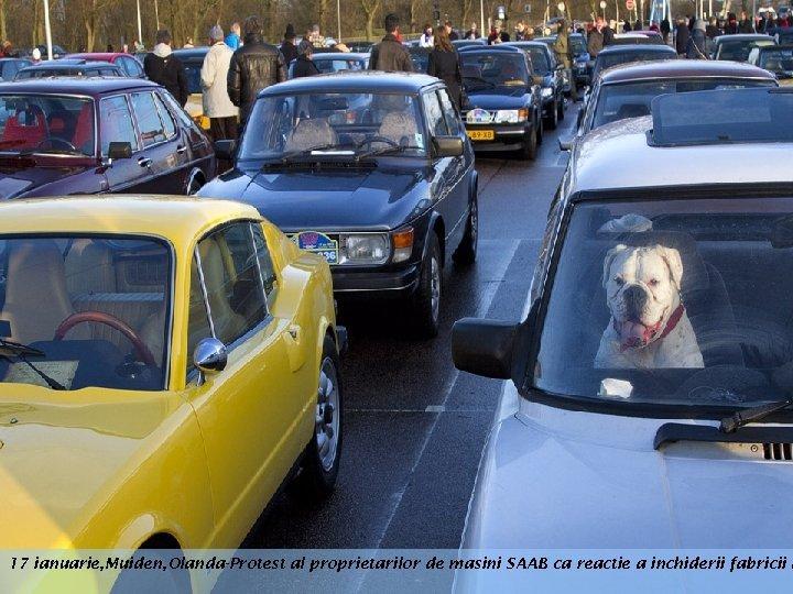 17 ianuarie, Muiden, Olanda-Protest al proprietarilor de masini SAAB ca reactie a inchiderii fabricii