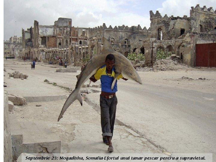 Septembrie 23: Mogadishu, Somalia-Efortul unui tanar pescar pentru a supravietui.