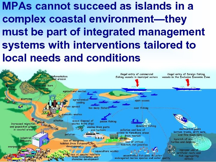 MPAs cannot succeed as islands in a complex coastal environment—they must be part of